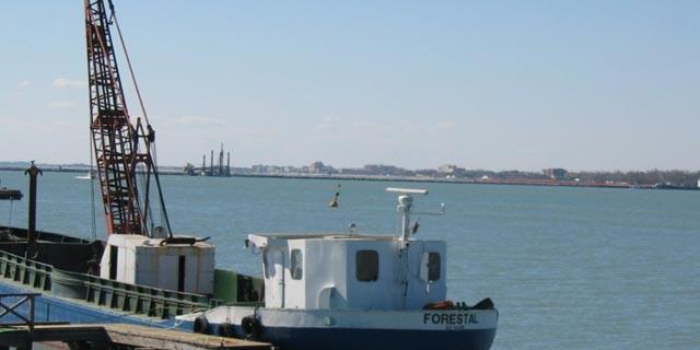 M/boat Forestal