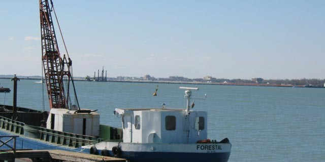 M/barca Forestal